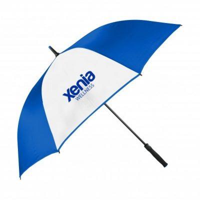 Color Accent Frame Auto Open Umbrella
