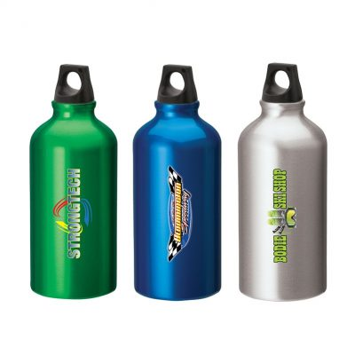 Sonia 16.9 oz. Flask with Twist Top