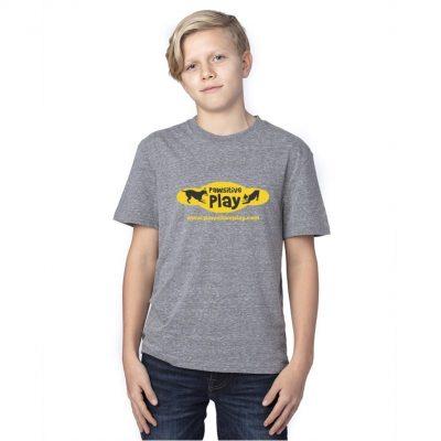 Threadfast Apparel Youth Triblend T-Shirt